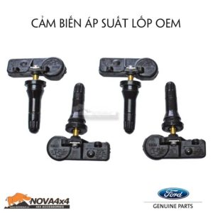 kích hoạt cảm biến áp suất lốp Ford